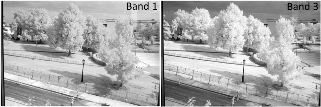 Nikon D200 IR Bands 1 and 3